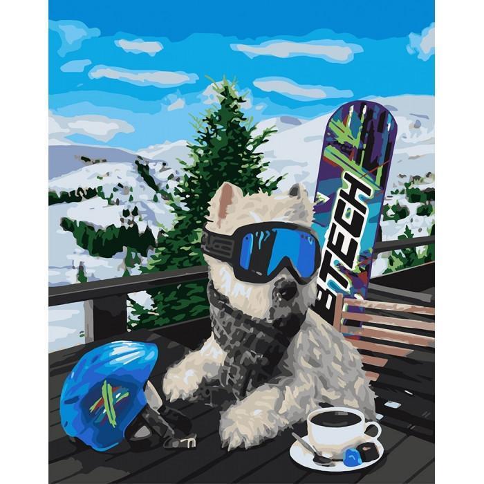 Картина рисование по номерам Идейка Сноубордист 40х50см КНО4171 набор для росписи, краски, кисти, холст