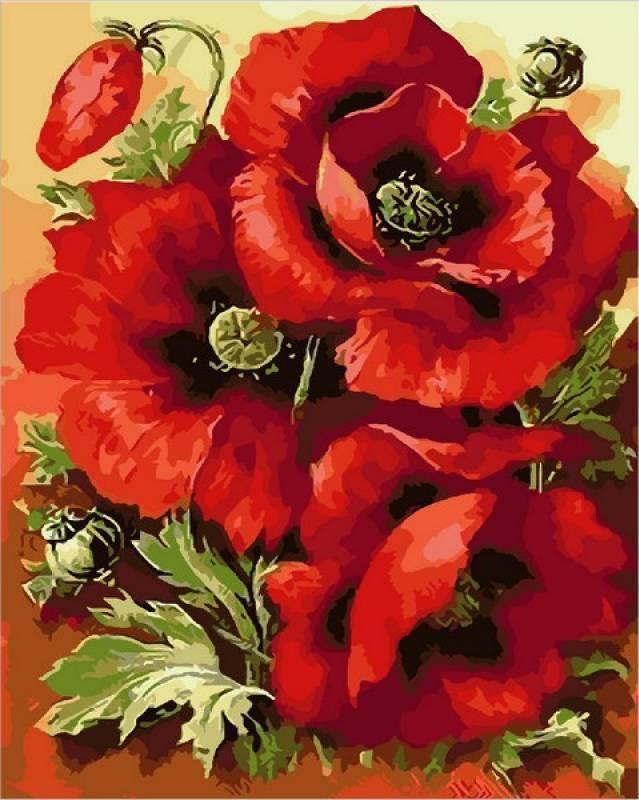 Картина рисование по номерам Mariposa Великолепные маки 40х50см Q1633 набор для росписи, краски, кисти, холст