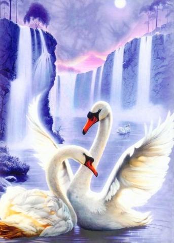 Алмазная мозаика Пара лебедей 50x70см DM-047 Полная зашивка. Набор алмазной вышивки