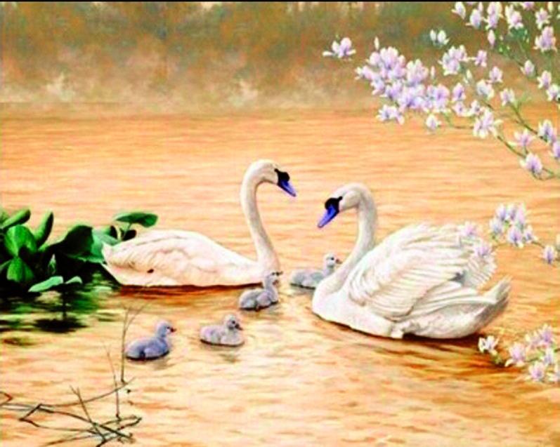 Алмазная мозаика Лебединая семья DM-297 50х40см Полная зашивка. Набор алмазной вышивки Птицы
