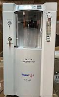 Кислородный концентратор с небулайзером, 5 л/мин (2020 год), Турция, фото 1