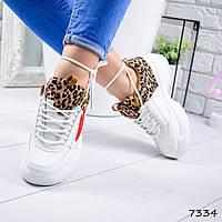 Кроссовки женские Terry белый + леопард