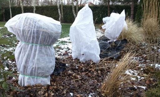 Укрытие растений на зиму своими руками агроволокном