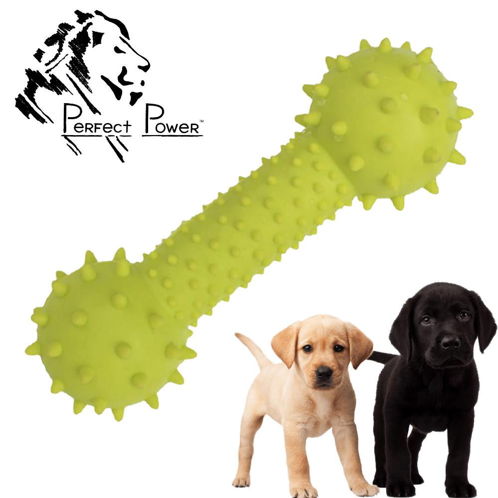 Гумова гантелька масажер для ясен 14 см Іграшка для собак шипована гантель для чищення зубів Зелена