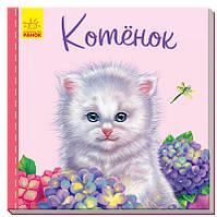Милые зверята. Котёнок Рос Ранок, фото 1