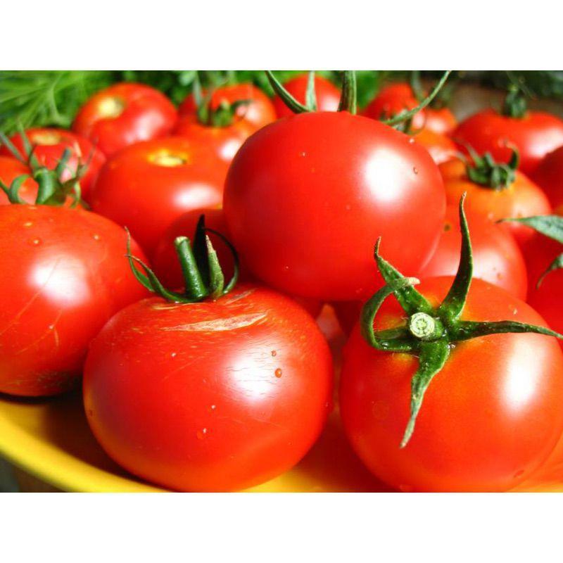 Загадка насіння помідора (Садиба центр) 0.1 г