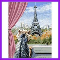 Набір акрилова живопис за номерами Париж з вікна Расскраска за номерами