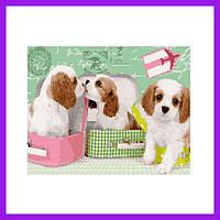 Картина по номерам Милые щеночки в чемоданах Расскраска по номерам