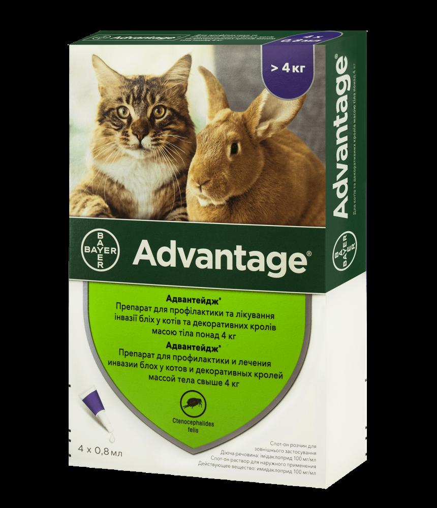 АДВАНТЕЙДЖ ADVANTAGE капли от блох для кошек и декоративных кроликов весом более 4 кг,, 1 пипетка