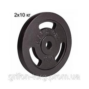 Сет з металевих дисків 2х10 кг