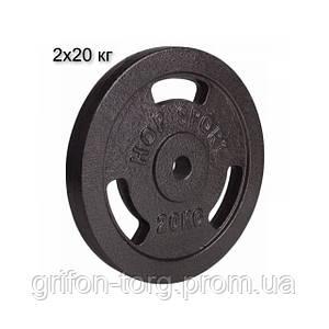 Сет з металевих дисків 2х20 кг