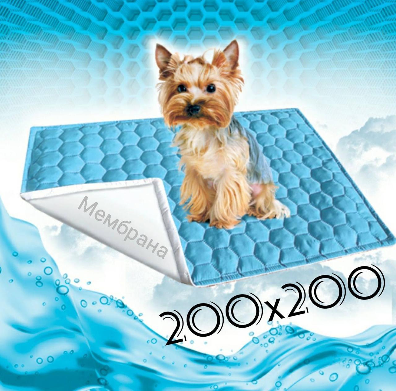 Багаторазова пелюшка для собак 200х250 см непромокаємий БІЛА