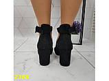Туфли лодочки с острым носком с ремешком застежкой низкий каблук замшевые К2388, фото 8