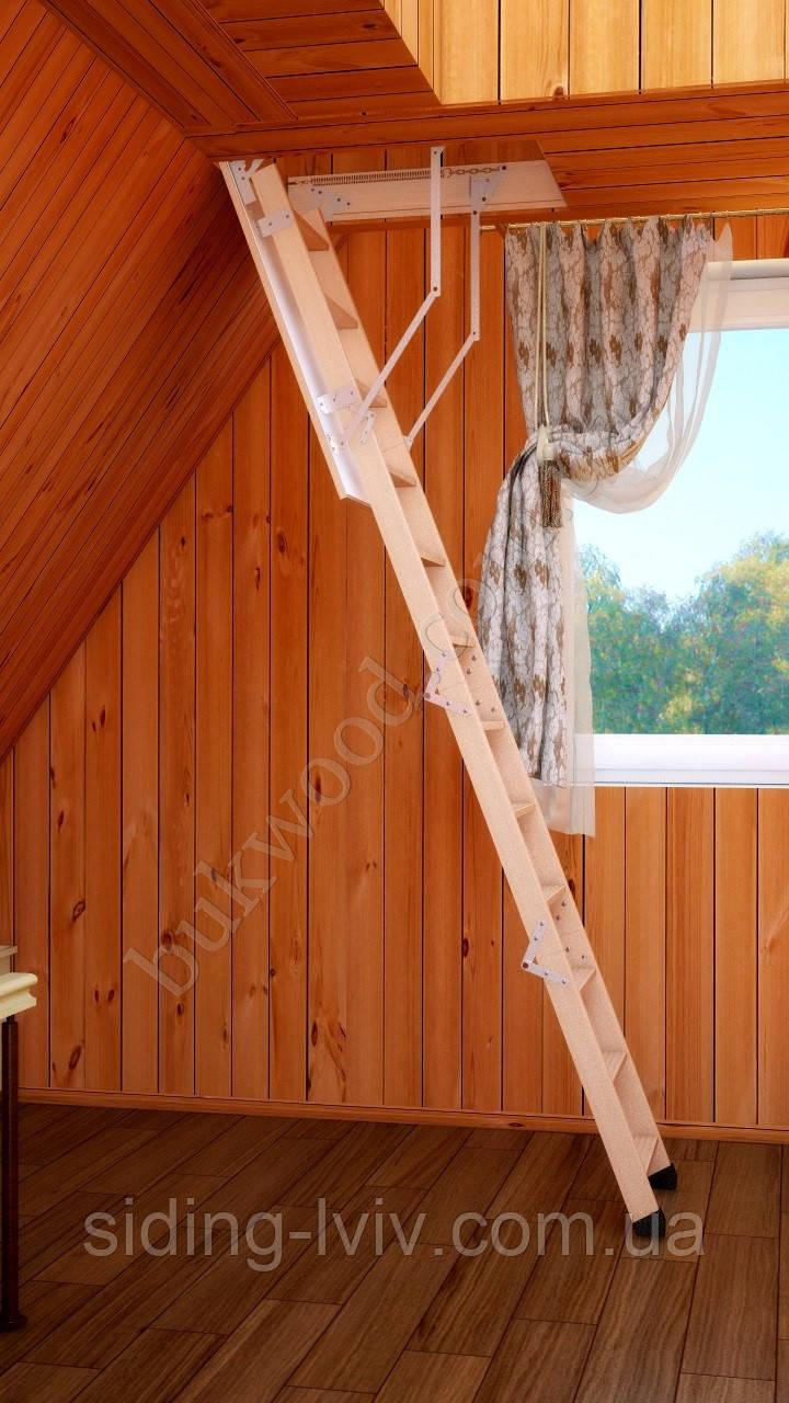 Сходи на горище Букові Bukwood Compact ST 120х70, 120х60