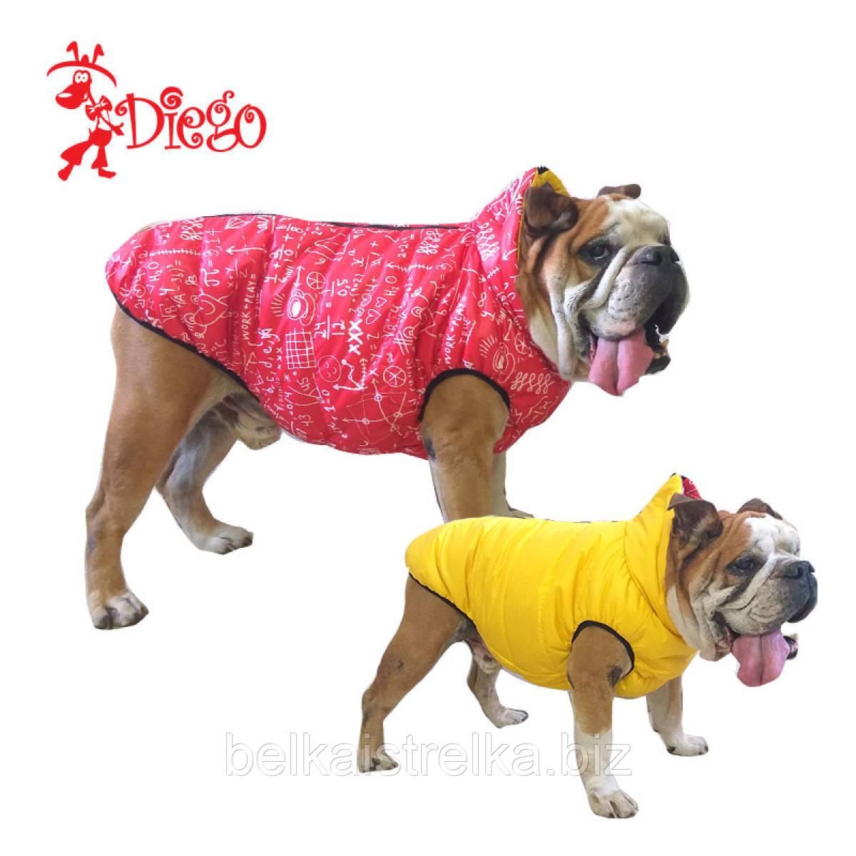 Жилет для собаки двухсторонний DIEGO sport double 8/10 Пифагор красный, размер 8