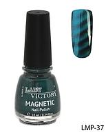 Лак для ногтей «Magnetic» Lady Victory LDV LMP-37 /94-0