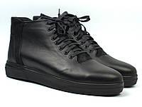 Мужская обувь больших размеров зимние ботинки черные кожаные на меху Rosso Avangard North Lion Black 02-227 BS, фото 1