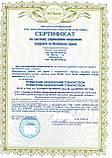 Сертификация ISO 9001, ISO 45001 на производство, проведение работ, оказание услуг, фото 2