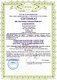 Сертификация ISO 9001, ISO 45001 на производство, проведение работ, оказание услуг, фото 3