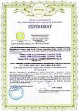 Сертификация ISO 9001, ISO 45001 на производство, проведение работ, оказание услуг, фото 4