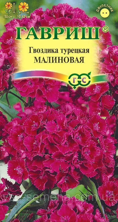 Гвоздика турецкая Малиновая 0,2 г (Гавриш)