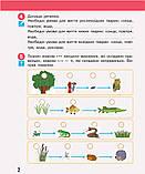 НУШ Я досліджую світ. 3 клас. Робочий зошит до підручника Н. Бібік, Г. Бондарчук. У 2 частинах. ЧАСТИНА 2., фото 2