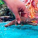 Стретч-игрушка в виде животного  – Морские хищники. Эра динозавров #SBABAM (12 шт, в дисплее), фото 10