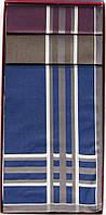 Комплект мужских носовых платков Guasch 104.96 D.18 (991)