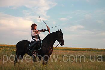 Akusta SILVERTIP Традиционный лук для стрельбы