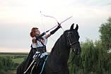 Akusta KARA-6000 Традиционный лук для стрельбы, фото 6