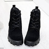 Черные женские ботинки из натуральной замши классического дизайна, фото 2