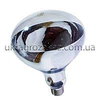 Лампа инфракрасная R125 100 Вт бел. BS, фото 1