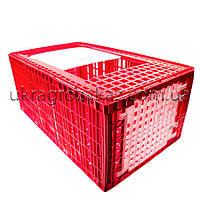 Большой ящик для перевозки индюков с верхней и боковой дверцами 96х57х42, фото 1