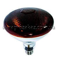Лампа инфракрасная BR38 100 Вт красн. BS, фото 1