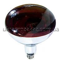 Лампа инфракрасная R125 100 Вт красн. LO, фото 1