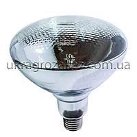 Лампа инфракрасная BR38 250 Вт бел. LO, фото 1