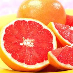 Екстракт кісточок грейпфрута