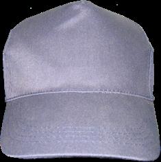 Бейсболка гретта (синяя / зеленая)