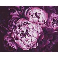Картина за номерами Ідейка КНО2076 Букети Буяння фарб 40х50см ідейка розпис за номерами