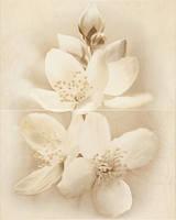 Панно Cersanit Diano 50x40 цветок