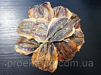 Ставридка солено - сушеная Супер вкусная и мясистая! - закуска к пиву (рыбные снеки) фасовка 250 г, фото 2