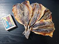 Ставридка солено - сушеная Супер вкусная и мясистая! - закуска к пиву (рыбные снеки) фасовка 250 г, фото 3