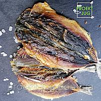 Ставридка солено - сушеная Супер вкусная и мясистая! - закуска к пиву (рыбные снеки) фасовка 250 г, фото 7