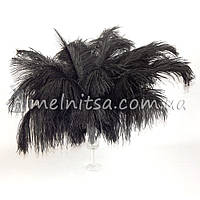 Перо страуса, 27-30 см, черный
