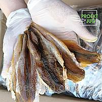 Корюшка рыбка солено-сушеная потрашенная ,без головы  снек к пиву фасовка 250 г, фото 3