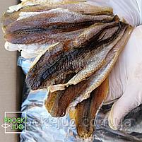 Корюшка рыбка солено-сушеная потрашенная ,без головы  снек к пиву фасовка 250 г, фото 5