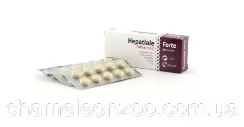 Гепатиале Форте 550 мг 40 табл VetExpert для собак великих порід