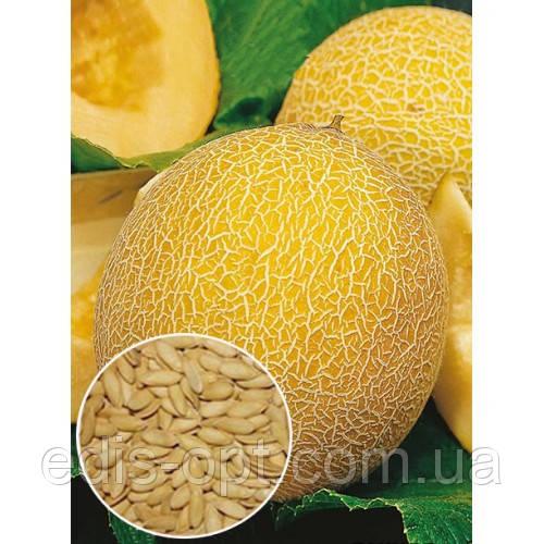 Дыня Леся, семена весовые Яскрава 1 кг