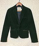 Шикарный женский вельветовый пиджак жакет 36 размер, фото 4