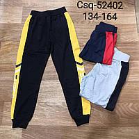 Спортивні штани для хлопчиків Seagull 134-164 р. р.